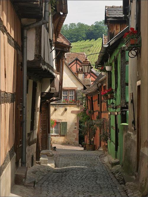 Village in Alsace (via flickr)