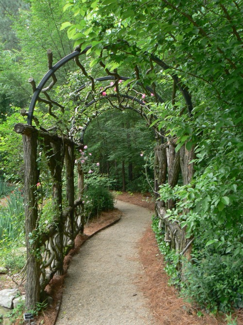 Rustic tunnel in an Atlanta garden. Photo by Martha Tate, co-exec Producer for HGTV, columnist for Atlanta AJC. Download this wallpaper at the link!! (I could sit in front of my computer all day with this view.)