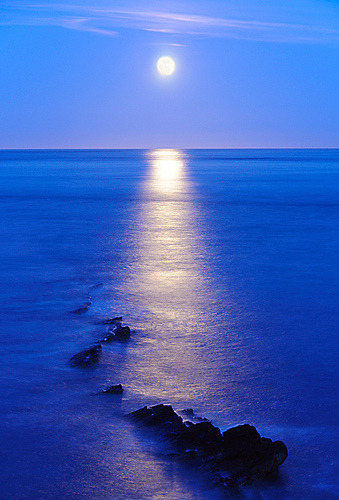 earth-songs:  Moonrise - Peveril Point, Swanage (UK) (by ryme-intrinseca (playing catch-up!))