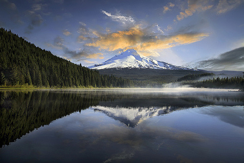 Mirror Image woodendreams:  (by David Gn Photography)