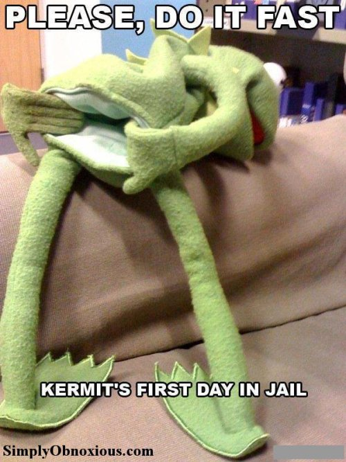 Even Kermit Gets Pinched!! Now Serving 1-3 for Assault…#MuppetProblems www.SimplyObnoxious.com