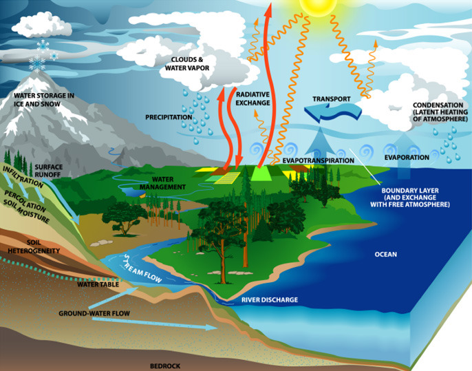 Water Cycle | World Water Day | March 21st