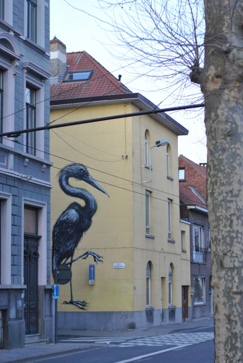 Big Roa piece in Ghent