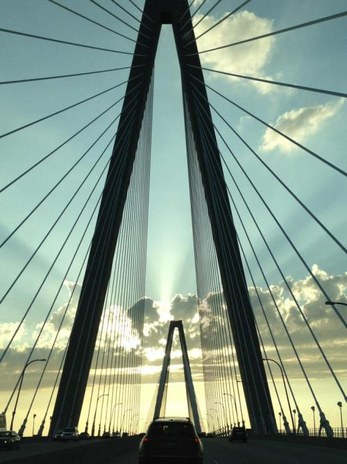 Morning on the Ravenel Bridge