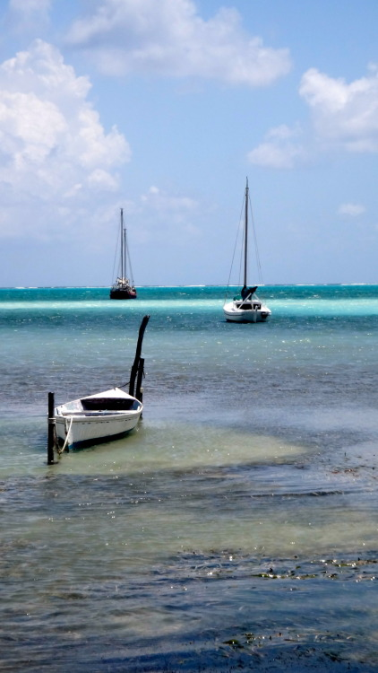 Photo I took during my travels on Caye Caulker, Belize.