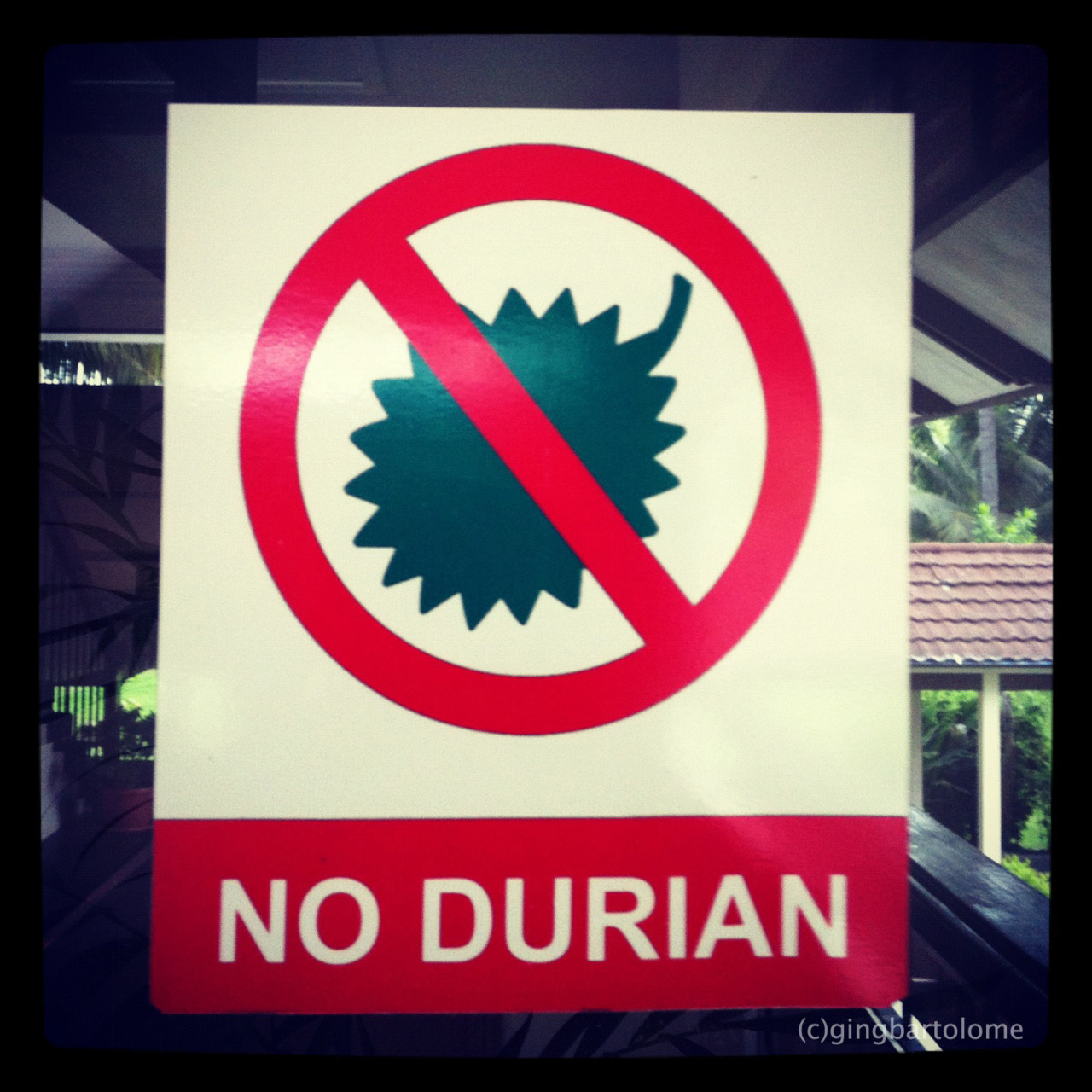 Seen plastered on doors, hotels don't want Durian fruit inside the rooms because of the smell that would probably stick to the carpet and the furniture. So I settled for candy instead ;)