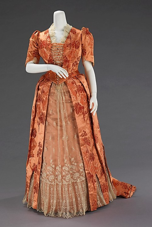 Dinner Dress 1886 The Metropolitan Museum of Art