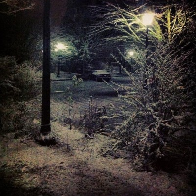 #snow #portland #trees #reedcollege #lux (Taken with Instagram at Reed College)
