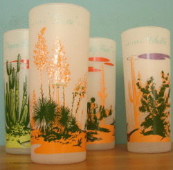 Vintage Blakely Oil Arizona Cactus Glasses (set of four) - $25.00 SOLD