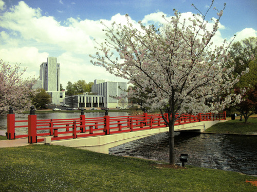 The Red Bridge in Big Spring Park.