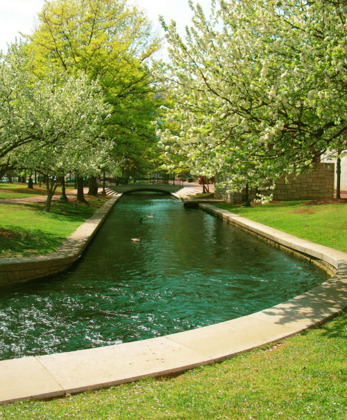 The Canals of the Big Spring.