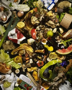 Every American trashes about 400 pounds of food a year — equal to the weight of a gorilla. With global food prices spiking around the world and malnourishment rampant, it's astounding to consider how much food people throw away every day. After paper products, food is the second biggest source of waste in the U.S, accounting for 33 million tons of trash in 2010, says Sarah Nassauer at The Wall Street Journal. Globally, an estimated 30 percent to 50 percent of all food gets thrown away, say Lisa Baertlein and Ernest Scheyder at Reuters. Why are we throwing away so much food, and what can be done?