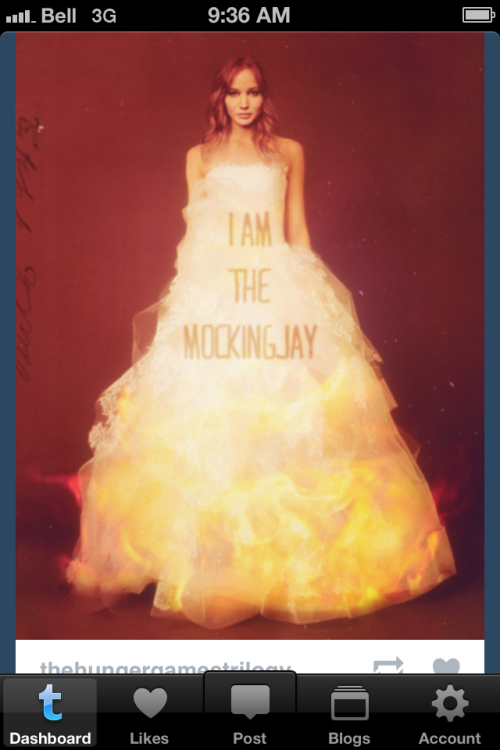 The Hunger Games is out tonight at midnight reblog if you are going to see it