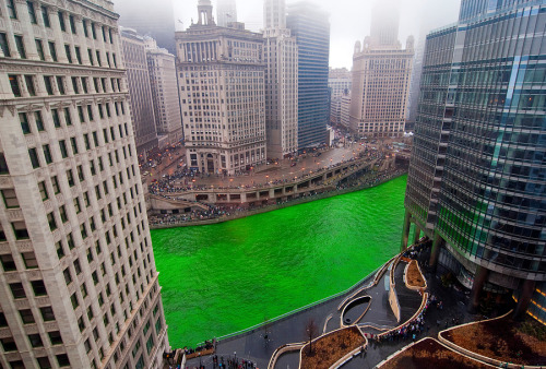 St. Patricks Day in Chicago by Jeff Lewis