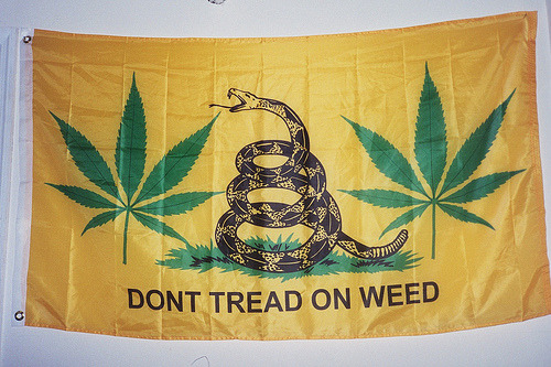 019_19A (by jamesviteri) weed flag 2