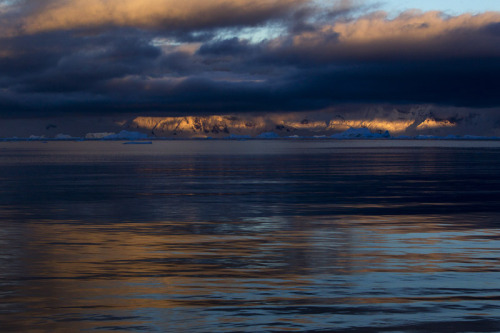 Sunrise,  Neko Harbour - Antarctic Peninsula