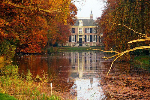 woodendreams:  (by Johan_Leiden)
