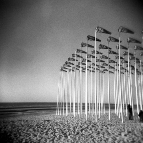 dailydiatom:  Daily Inspiration Holga - sea II by *Mar10Photography (Source: limaria.deviantart.com)
