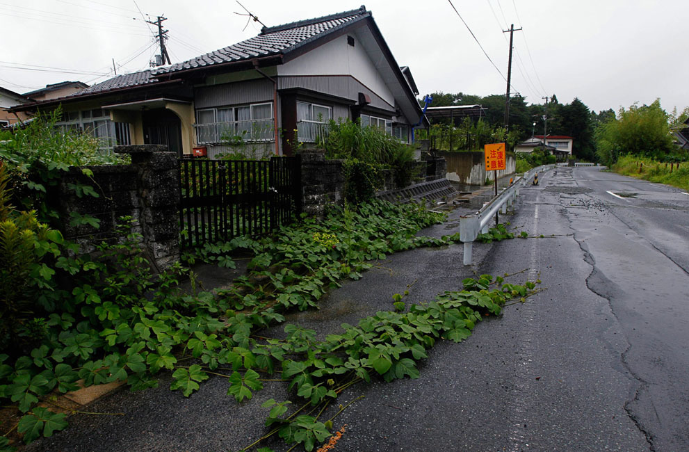 Ivy grows over a street in Tomioka town, Fukushima, northeastern Japan, on August 19, 2011. Vines creep across Tomioka's empty streets, its prim gardens overgrown with waist-high weeds and meadow flowers.