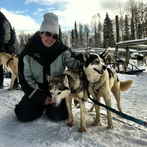 Great day of dog sledding and loved knowing how well taken care of the dogs were:  Finding Peace while Dog Sledding in Iso Syote, Finland.