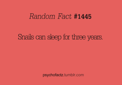 psychofactz:  More Facts on Psychofacts :)  I want to be a snail