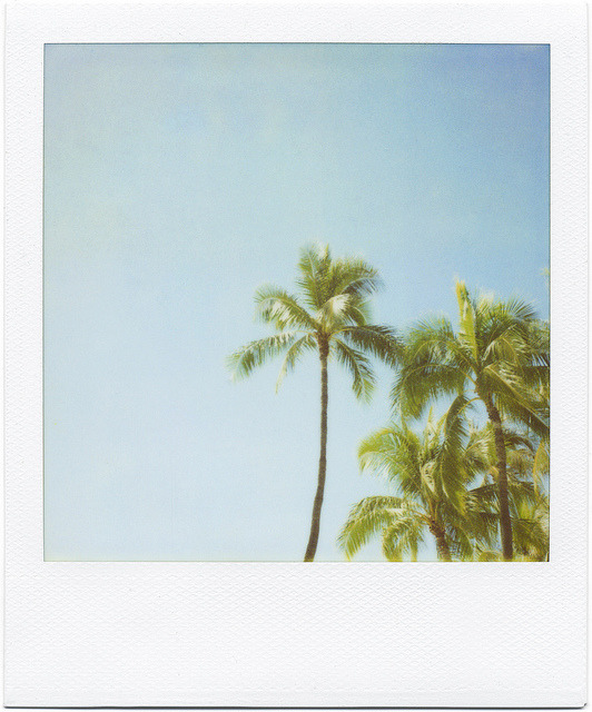 s-un-rise:  i love polaroids so much