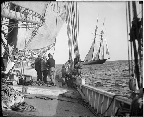 mfthings:  The fishing schooner Mayflower from the deck of the Elizabeth Howard by Boston Public Library on Flickr.