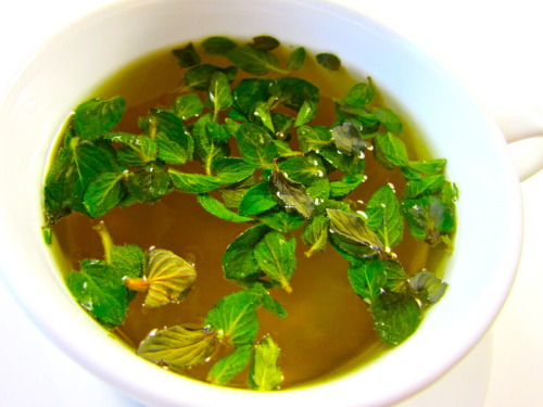 A Hunger Games After Dinner Drink: Mint Tea