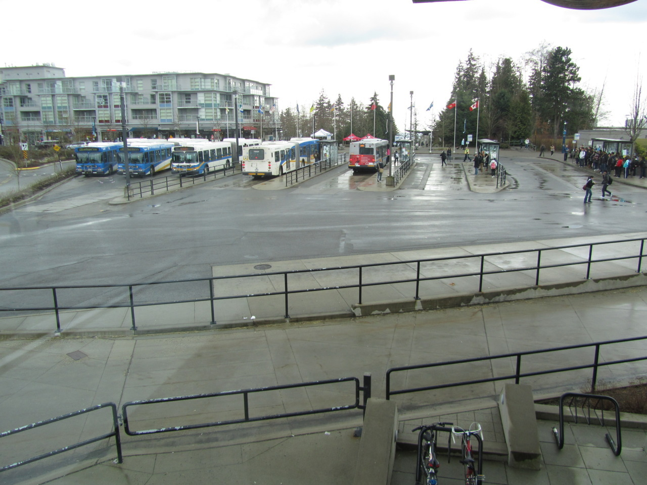 SFU Burnaby's main bus terminal. One a typically rainy day. That lineup on the right is for the 145, which I have to negotiate most days.