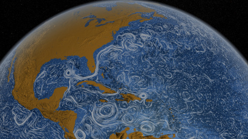 It's a VanGogh-esque world (NASA's rapresentation of oceanic surface currents - here's the video) (via rispostesenzadomanda)