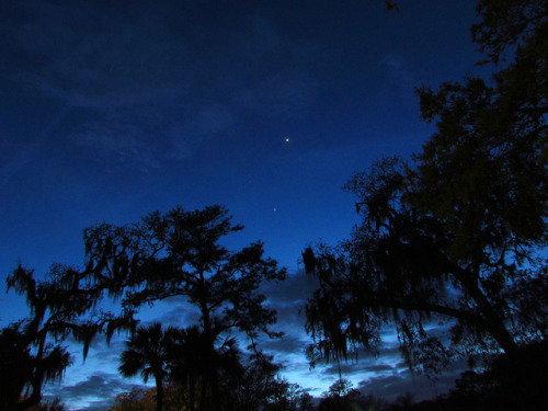 intracoastal-wanderings:  Jupiter and Venus over Hilton Head, SC