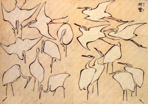 fckyeaharthistory:  Hokusai - Cranes from Quick Lessons in Simplified Drawing, 1823. Ink on paper