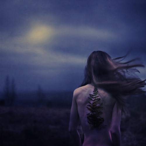 growth and worth by brookeshaden on Flickr.