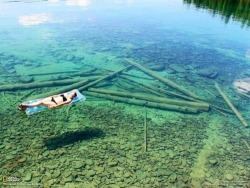 hopelesssavages:  This is Flathead Lake in northwestern Montana, USA. The water is so transparent that it seems that this is a quite shallow lake. In fact, it is 370.7 feet deep.