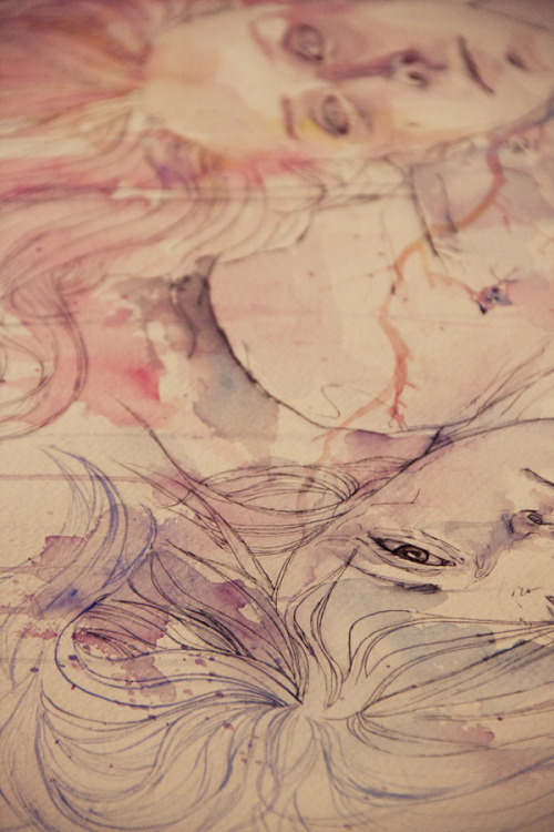agnes-cecile:  in bloom