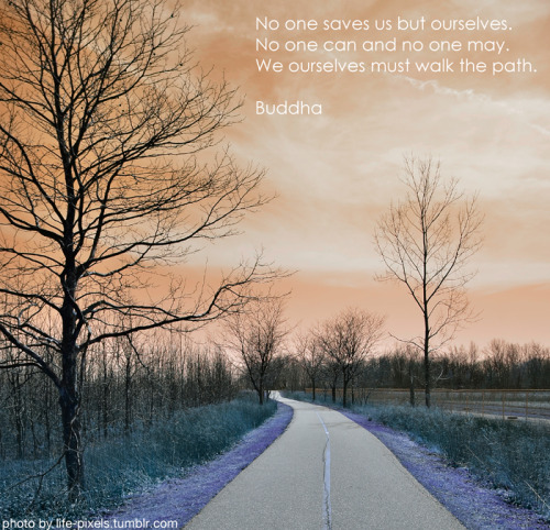 quote-book:  Quote by Buddha Photo by Nina Kemives aka life-pixels