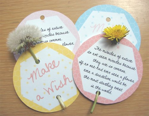 "Kind Over Matter Dandelion Cards - PDF""The dandelion radiantly shining in the grass like a spark dropped from the sun.""~Henry Ward BeecherI know a good lot of people think of dandelions as weeds, I on the other hand, think they're beautiful & extremely useful. I think it's mainly because I attach childhood memories to them, like writing on my arms, making dandelion jewelry & of course making wishes! So many ways to use them, from dandelion root to tea, coffee, wine to using them in soup, sandwiches & salads!"