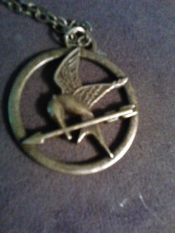 hunger games gotta love it