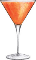 Simple syrup, campari, fresh orange, seltzer and ice - instant glamour to any evening.