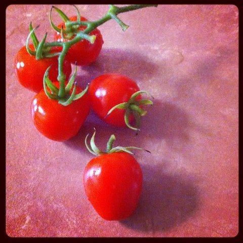 The other day we finally harvested our first tomatoes! When we first bought the tomato plant about a year and a half ago, several branches snapped and died before Nathan and I realised we weren't giving the plant enough support… After the plant recovered and started to grow, we got flowers and tomatoes. Except that as the tomatoes grew and ripened the plant shrivelled and dried. It was like it was using all its energy to produce six little tomatoes, just for us. One morning we wake up to find out a ruthless possum had attacked the plant and gorged on all our tomatoes! Our little babies! The happy part out of all this was that he left some half eaten tomatoes in the pot still, and before we knew it a new tomato plant was sprouting from the dirt. We've nurtured it for a few months now and have kept it away from snails, caterpillars and weird fungus that grows in the pot sometimes. And this is our first reward! Our first tomatoes. I look forward to savouring them, I am sure they will taste delicious! The plant is doing well and still growing a lot, we've had to tie up the top of it to a hook in the ceiling because it was growing much taller than the spike we first used. There are currently 12 little tomatoes on their way, and we're very proud parents :-)