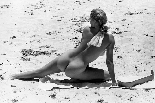 piratetreasure:  eve meyer
