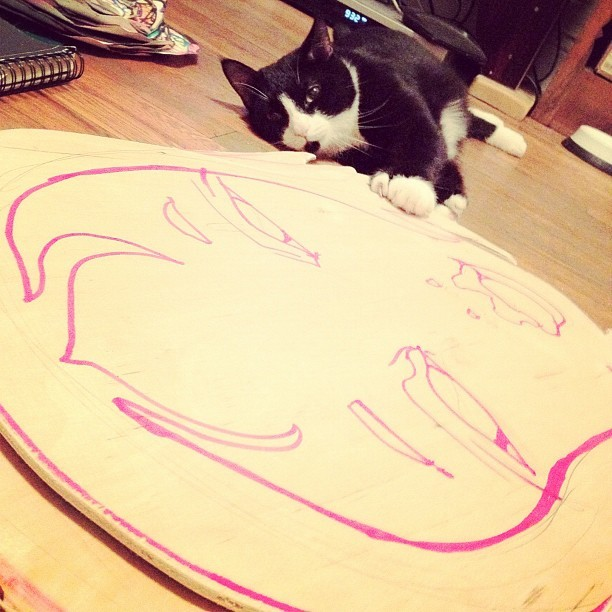 #otto #cute #cat #tom #tomhart #woodcuts (Taken with instagram)