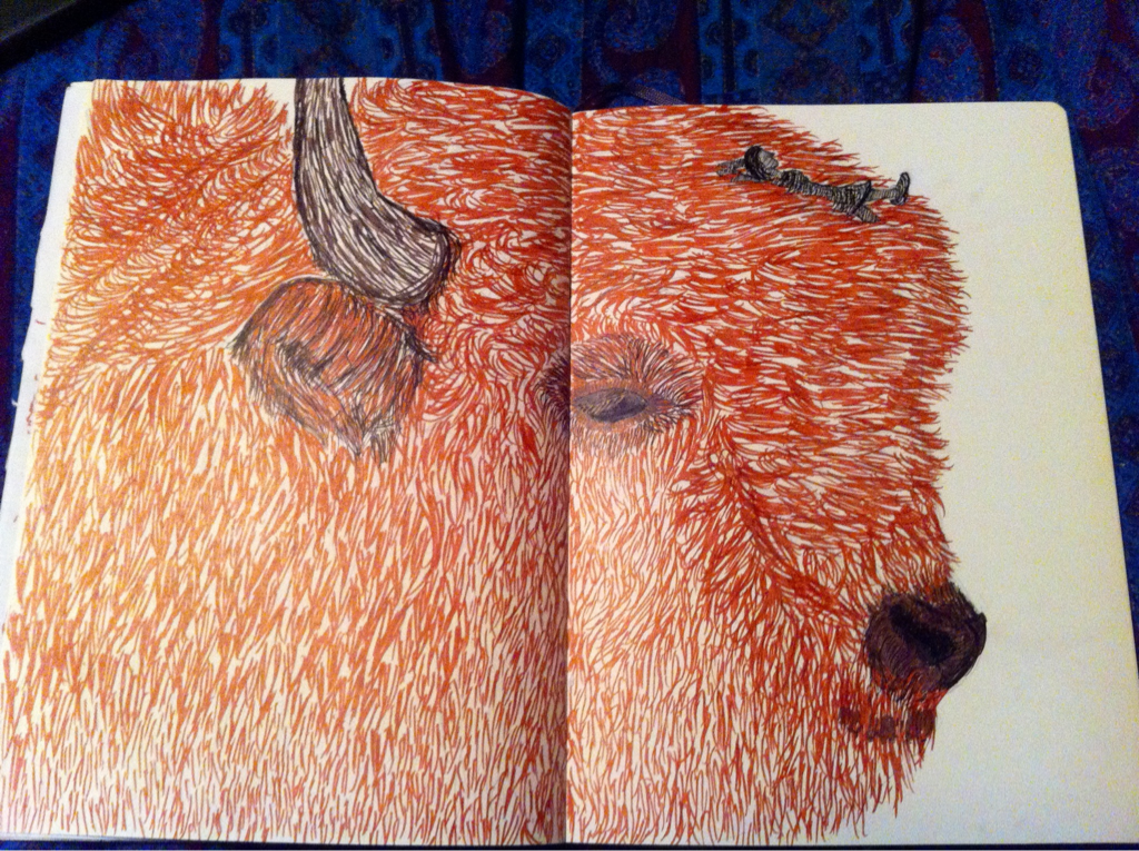 "SKETCHBOOK: ""I Love You, Big Fat Bison!""  Done with brown felt tip and black ink-pens on moleskine sketchbook paper. Based on a photo I saw somewhere on tumblr."