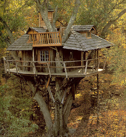 Inhabited Tree House, Marin, California photo via ornament