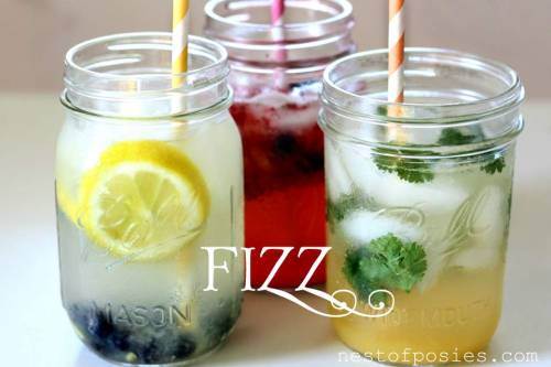 DIY Low Calorie Fizz Drinks. She has several great combinations like strawberry blueberry fizz, cilantro orange coconut fizz, and blueberry lemon fizz. Also tip in making mason jars fit blenders so you can blend single servings. Tutorial and recipes from Nest of Posies here.