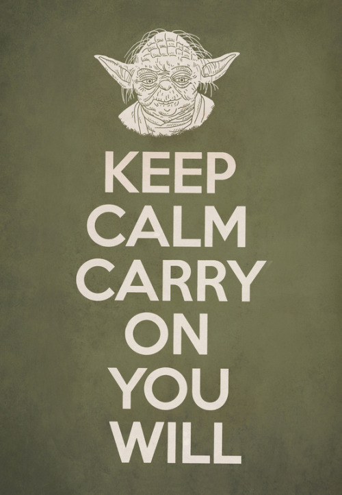 'Keep Calm Carry On You Will' by Terry Fan