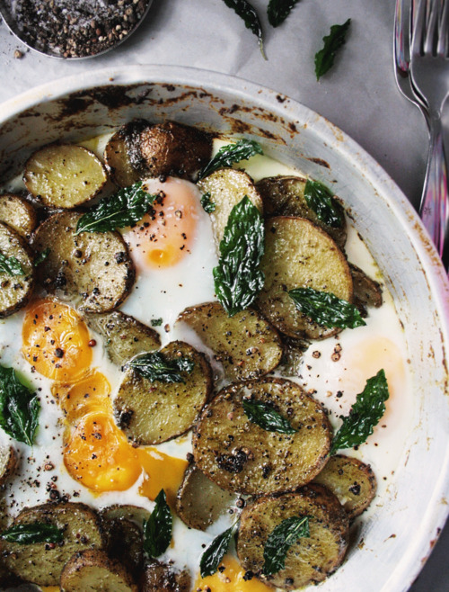 witanddelight:  Making Pesto Potatoes & Eggs - Notions & Notations of a Novice Cook