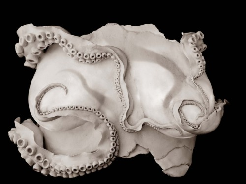 Ruth Power: Breasts (Cephalophilia), 2011, 48cm wide x 42cm long x 14cm deep; porcelain, LED light, cord, plug, wooden box with black paint and flocked interior (Black and white image)