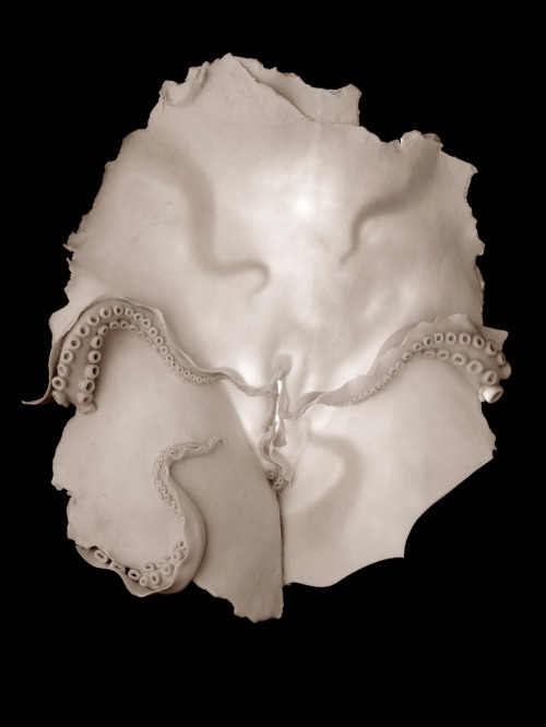 Ruth Power: Vulva 1 (Cephalophilia), 2010, 43cm wide x 37cm long x 14cm deep; 2011, porcelain, LED light, cord, wooden box with black paint and flocked interior (Black and white image)