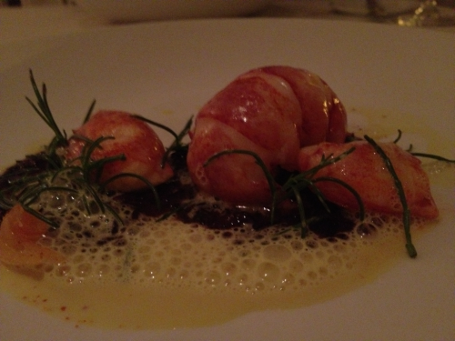 Last nights dinner included this lobster over black forbidden rice at Bryan Voltaggio's Volt, in Frederick, MD.   Amazing!